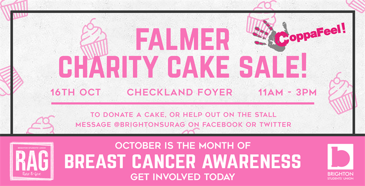 Falmer Charity Cake Sale - Breast Cancer Awareness!