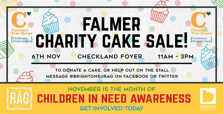 Falmer Charity Cake Sale - Children In Need Awareness!